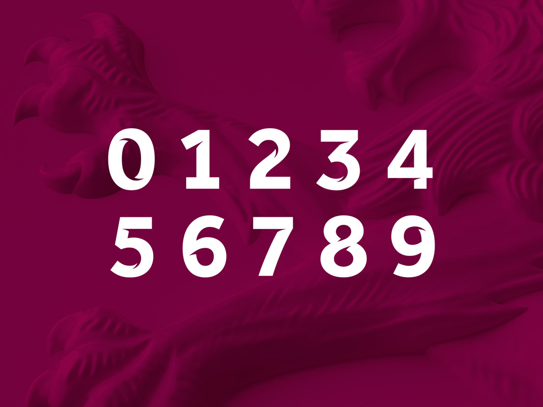 Aston-Villa-Bespoke-Numbering